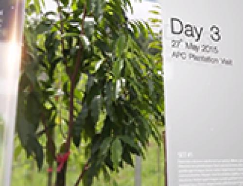 Asia Plantation Capital   Plantation Visit – 017 [May 2015]