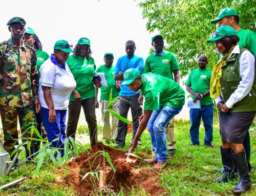 APC & BIDCO  HOST AFRICA BAMBOO PLANTING DAY